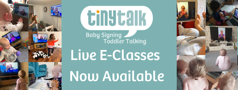 TinyTalk Baby Signing Buckingham & Milton Keynes's main image