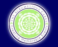 The Scrumptious Cakes's logo