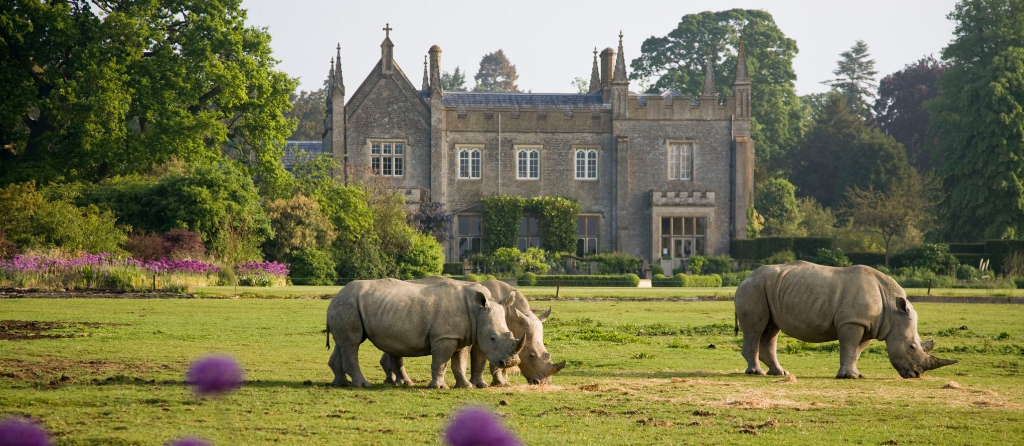 Cotswold Wildlife Park & Gardens's main image