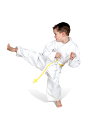 Kids Fun Martial Arts Classes Online's logo