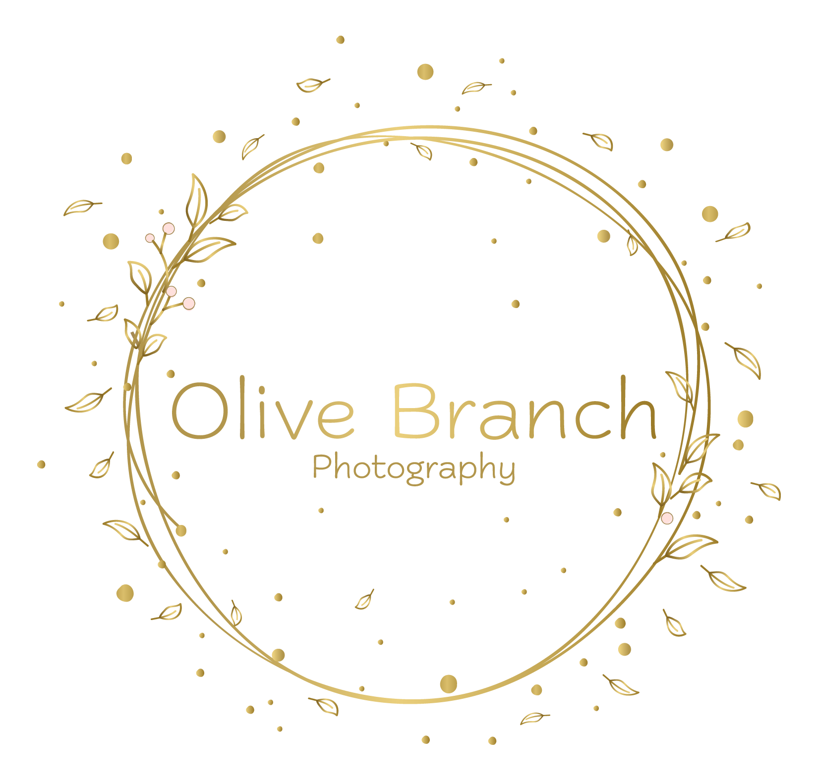 Olive Branch Photography - Derbyshire and West Midlands's logo