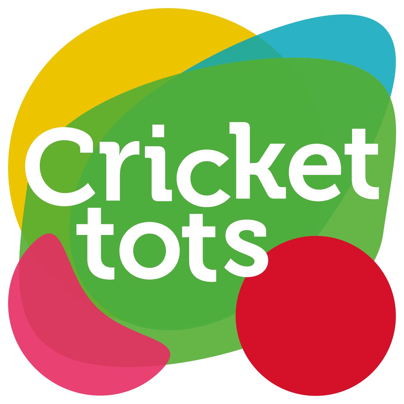 Cricket tots Suffolk's logo