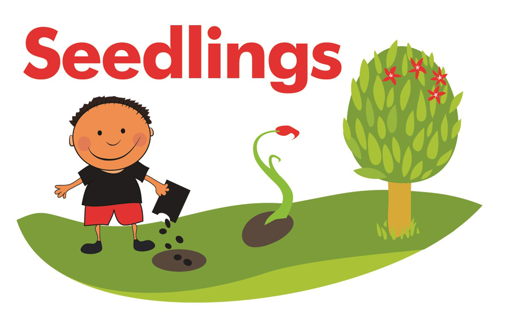 Seedlings Children Centre's logo