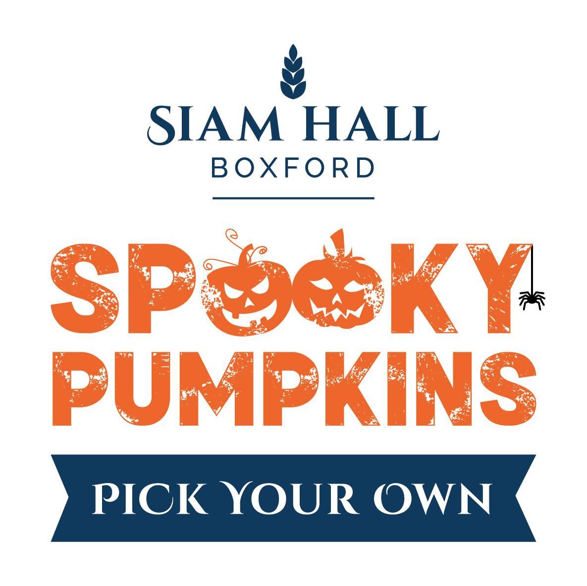 Siam Hall Spooky Pumpkins 's logo