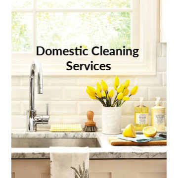 Domestic Cleaning Services's logo