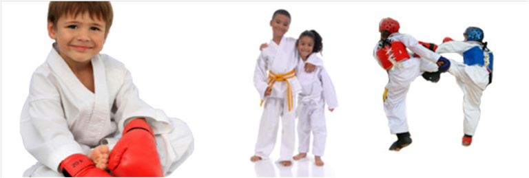 Kids Fun Martial Arts Classes Online's main image