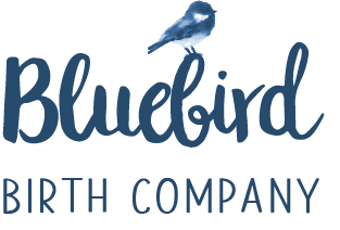 Bluebird Birth Company's logo